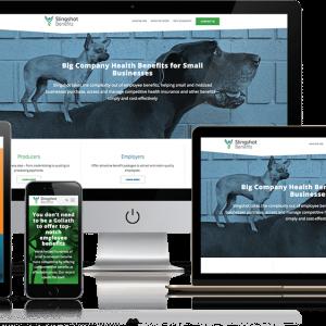 Billings Website Design Premium Package